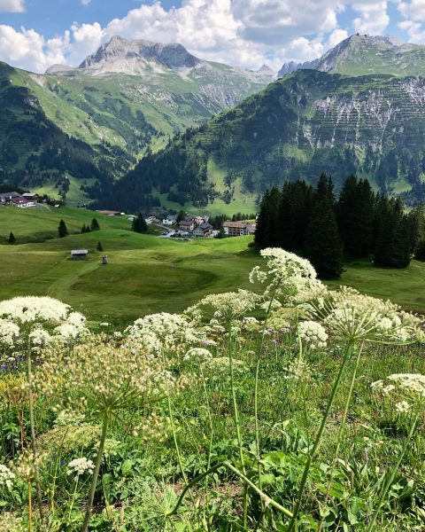 On this meadows we use to ski in winter. It's amazing to see ...