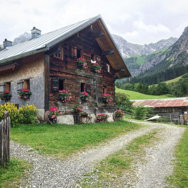 Walking in the fresh paint air #hiking #walking #walk #austria #austria🇦🇹 #kleinwalsertal #kleinwalsertaltravel ...
