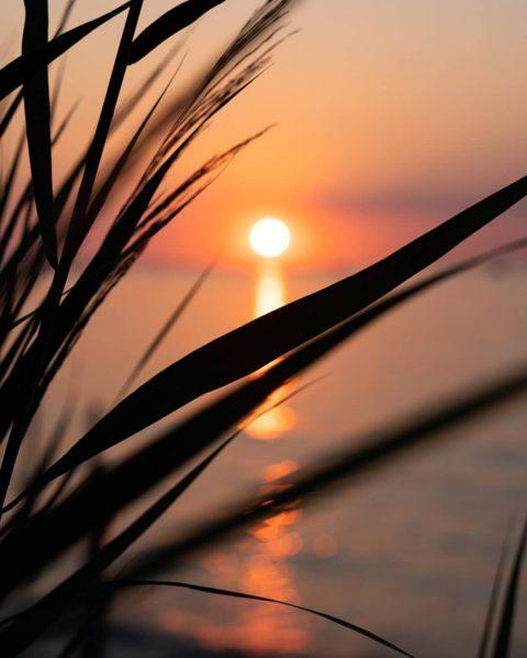 Wenn ich den See seh, brauch ich kein Meer mehr 🧡 #lieblingssonnenuntergangsplätzle • • • #venividivorarlberg #lakeofconstance...
