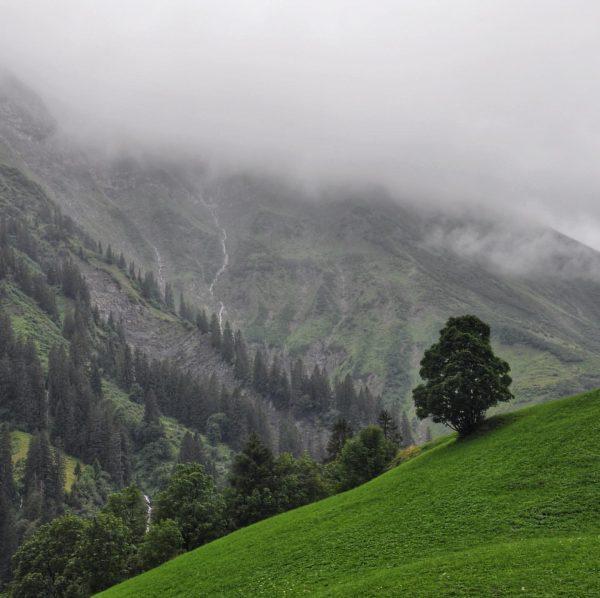 #bregenzerwald #oberboden #schröcken #warth #lifeisbetterinthemountains #wandernmachtglücklich #grün Schröcken