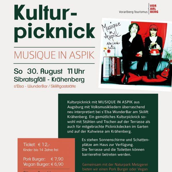 Kulturpicknick am 30.8.20 ab 11 Uhr mit Musique in Aspik, dem Volksweltmusiklyrikduo aus ...