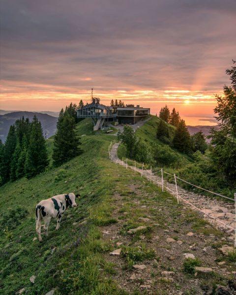 Diesen Freitag, den 7.August, findet die zweite Sonnenuntergangsfahrt in diesem Sommer statt und ...