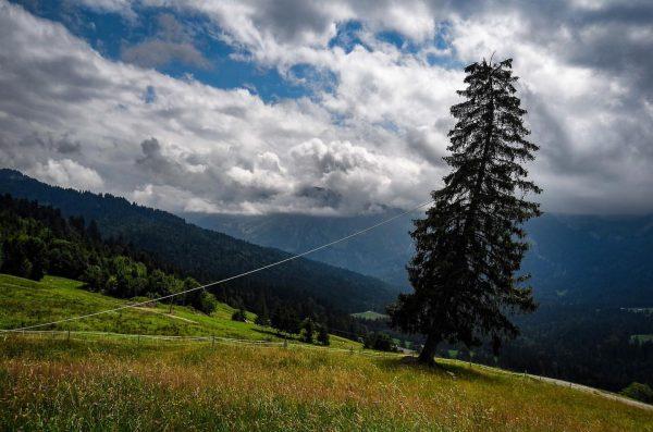 Schiefe 🌲 #georunderindberg #bregenzerwald #venividivorarlberg Sibratsgfäll, Vorarlberg, Austria
