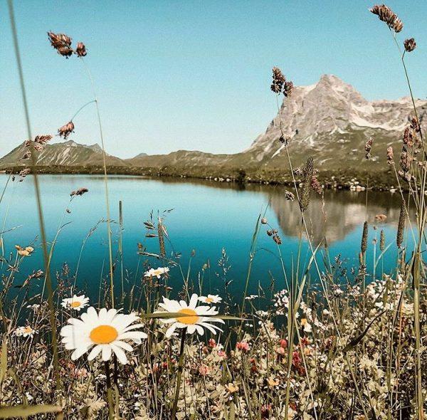 Sommer in den Bergen ☀️🌼 Foto: @mrs.vic.key #warthschröcken #warth #schröcken #atemderberge #freiheit #durchatmen ...