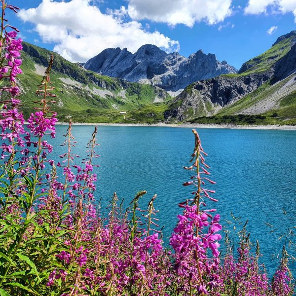Nature is simply beautiful. #venividivorarlberg #bergsee #lake #mountainscape #bergpic #outdoorlovers #naturelover #flowers #kraxeln #draussenzuhause #bestmountainartists @luenersee @visitvorarlberg...
