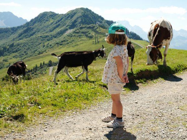#wandern aka #spazierengehen im #bregenzerwald #damuels #faschina #kesselflucht #berge #sommerindenbergen Damülser Berge