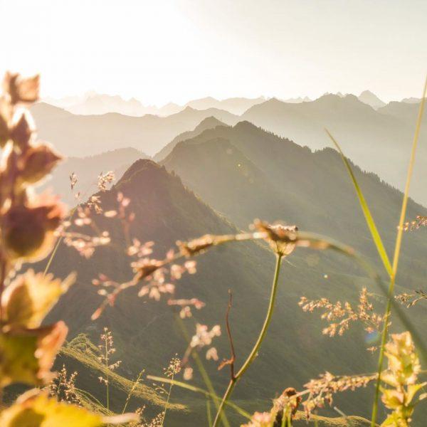 ❤️❤️❤️ #naturephotography #nature #mountains #photography #travel #landscape #adventure #explore #landscapephotography #mountainlovers #photographer #mountaineering #mountainview #view #mountain #mountainview...