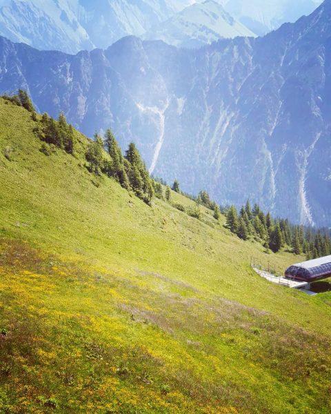 Kleines Suchbild am Freitag 🔎 Wer findet es❕❔ #urlaubsfotos #fernweh #berge #fellhorn #kanzelwand #kleinwalsertal #österreich #allgäu #allgäuliebe...