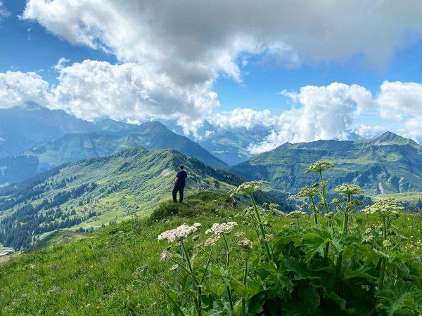 So calm⛰ #wandern #hiking #mountains #wanderlust #austria #vorarlberg #damüls #mittagsspitze #damülsermittagsspitze #bregenzerwald #landscape #feelaustria #visitaustria #venividivorarlberg #visitvorarlberg...