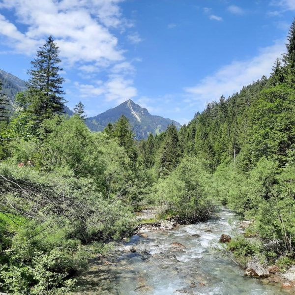 𝐈𝐜𝐡 𝐤𝐚𝐦. 𝐈𝐜𝐡 𝐬𝐚𝐡. 𝐌𝐚𝐫𝐮𝐥. ⛰ #VeniVidiVorarlberg #VisitVorarlberg #Marul #GroßesWalsertal #Sommer #Wandern Marul, ...