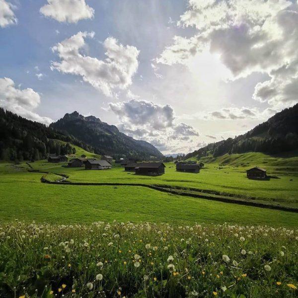 Entdecke von Bregenz aus den nahegelegenen Bregenzerwald! Ein Besuch der Vorsäß-Siedlung Schönebach ist ...