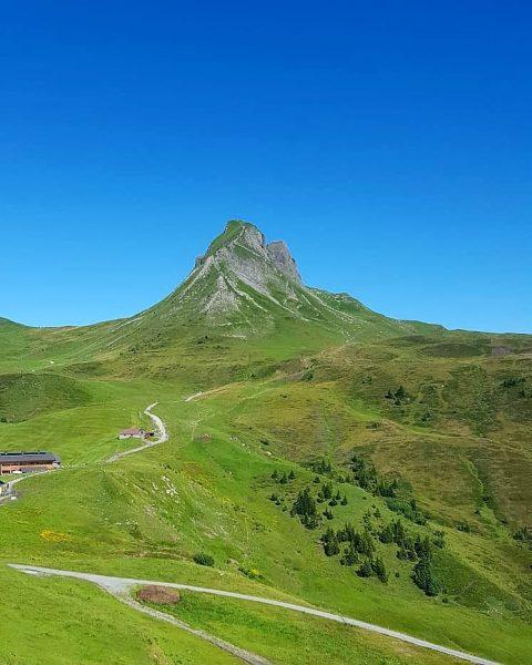what a day 💚 #damüls #bregenzerwald #mittagspitze #beautiful #mountains #heaven #perfectdays #goodfeelings #summer #placetobe #mountainadiccted #visitvorarlberg #venividivorarlberg...