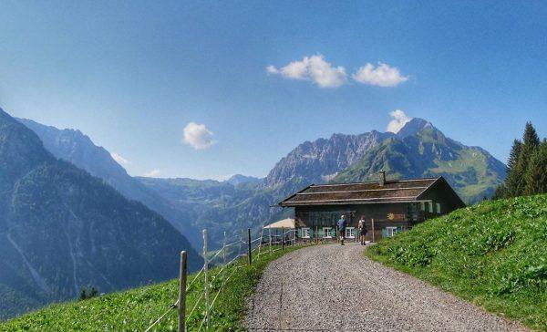 Summer #landscapephotography #landscape_lovers #landschaftsfotografie #nature #mountains #alps #alpen #pfade #tal #kleinwalsertal #österreich #austria