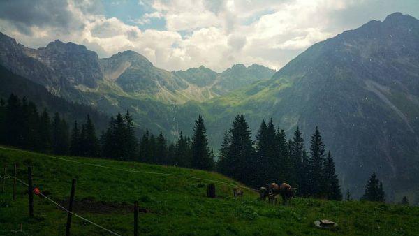 Blick von der #kuhgehrenalpe ins #wildental. Herrlich bei Sonnenschein & Regen zugleich! #kleinwalsertal ...
