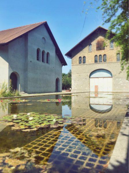 Kunstraum Dornbirn 💭↗️🎦 Erwin Wurm . . . #kunstraumdornbirn #erwinwurm #artistsandsculptures #austriaart #seerosen ...