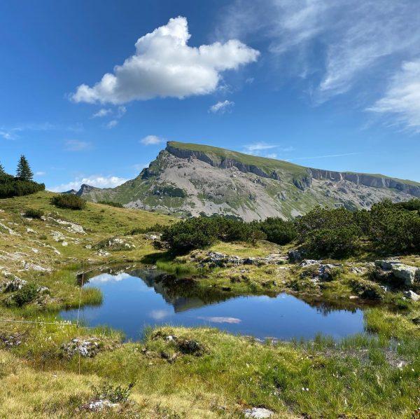 Bergtour auf den Hohen Ifen, Wanderurlaub im Ambros in Bezau, Haus für 2-4 ...
