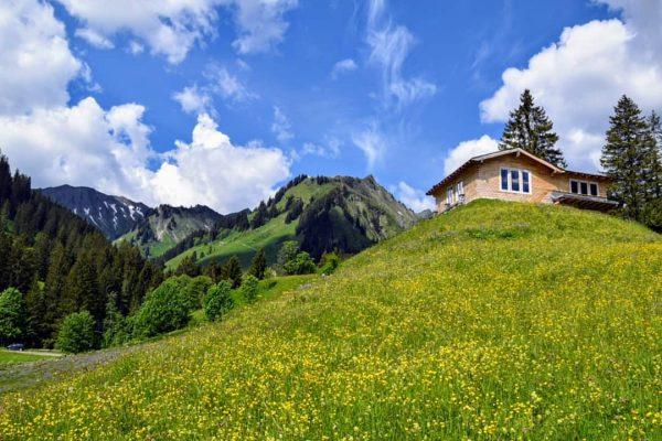 Erinnerung an den #Urlaub im #Kleinwalsertal #Baad 😊 . #Wandern #hiking #Berge #mountains ...