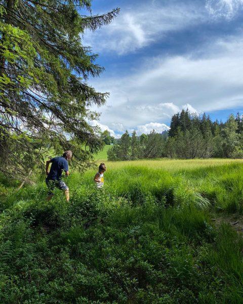 Hiking 🥾 #fohramoos #bregenzerwald #venividivorarlberg Europaschutzgebiet Fohramoos