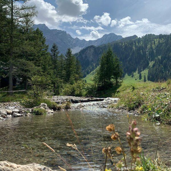 Unser Naturpark #nenzingerhimmel #wanderparadies #erlebealpencamping #erlebealpenresort #erlebehimmelchalet Alpencamping Nenzing