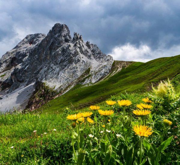 #lünersee #vorarlbergwandern #vorarlberg #brandnertal #alpenpanorama #alpen #bergwandern #mountainlove #hikingviews #naturliebe #naturelover #alpenliebe #alpsmountains ...