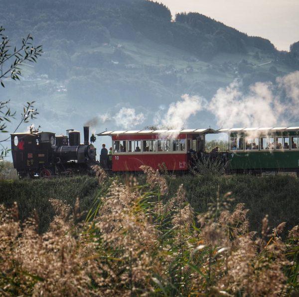 Rheinbähnle 🚂 🚂 🚂 🤩 #austria #vorarlberg #ländle #hard #rheintal #rheindamm #rheinmündung #eisenbahn ...