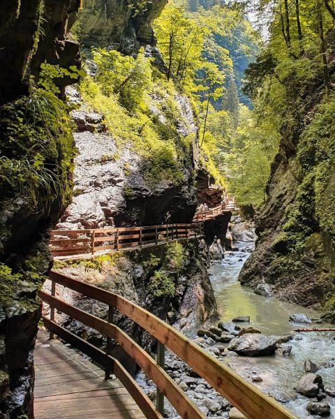 #mondayinspiration: Spektakulärer Ausflug in die Rappenloch- & Alplochschlucht 😯🏞☀️⬇️ . Die beiden Schluchten ...