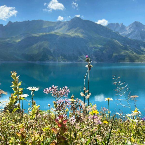 Something about colors #austria #lünersee #vorarlberg #visitvorarlberg #venividivorarlberg #österreich #nature #hiking #rätikon #bludenz ...