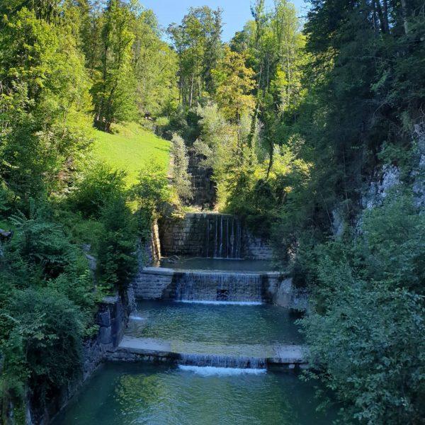 #wandern #rappenlochschlucht #wässerfälle #august #urlaub #wasser #visitbregenzerwald #tollertag #aussichtspunkte #ausflugstipp #österreich #voralberg #hiking ...
