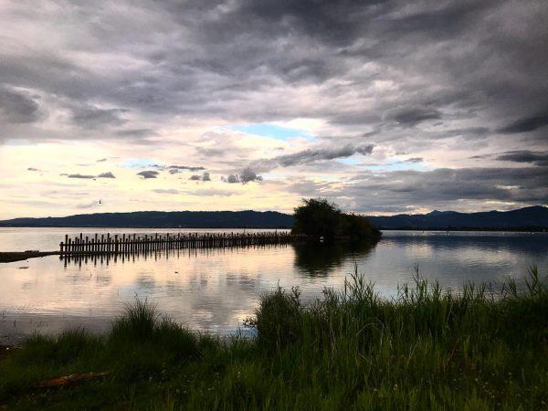 Einfach nur schön 🖤 Naturschutzgebiet Rheinspitz