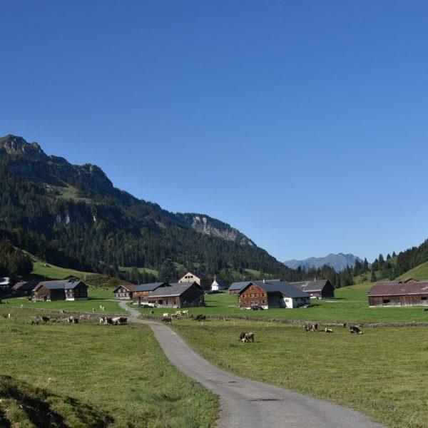 """#37 Sennalpe der KäseStrasse Bregenzerwald """"Vorsäß Schönenbach"""". Auf ca. 1.000 m Seehöhe liegt ..."""