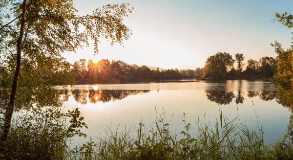 Wir genießen die lauen Sommerabende nochmal in vollen Zügen in der Natur 😍🌅🌾, ...