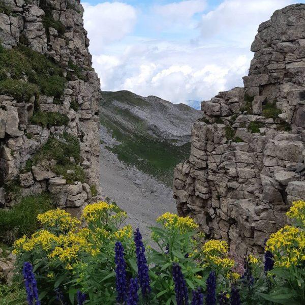 #hoherifen #austria #kleinwalsertal #bergliebe #hiking #wandern #bergwandern #natur #aufmweg #kopffreikriegen #fun Hoher Ifen