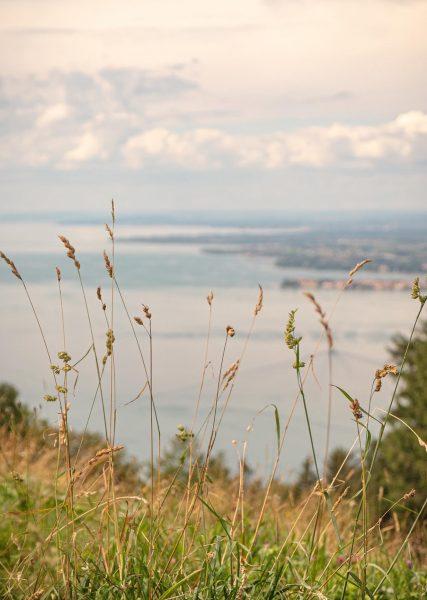 Above Bregenz II #stademagazine #naturephotography #landscapephotography #broadmag #taintedmag #reframedmag #somewheremagazine #dreamermagazine #freshairclub #bodensee ...
