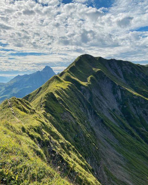 #höferspitze #wandern #hiking #trailrunning #trcv #hochtannbergpass #warthschröcken #bregenzerwald #bergfinkontour Höferspitze