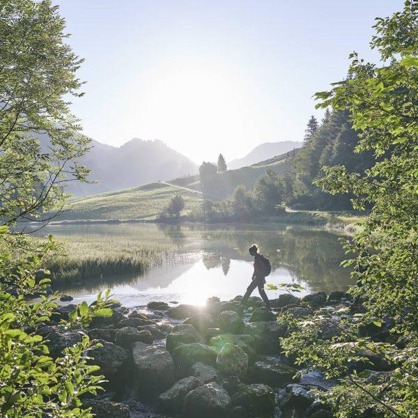 Frühmorgens am Lecknersee 🌅 📸 @kaiser_alexander #landschaft #landscape #wandern #hiking #naturelovers #lake #lecknersee ...