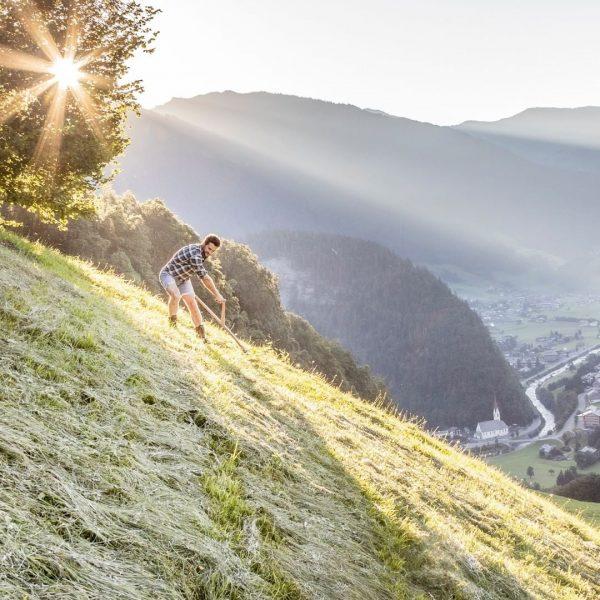 Zeit für die Mahd! 🌿 Im Bregenzerwald mähen wir steile Bergwiesen traditionell von Hand. 👩🌾 Der Schweiß...