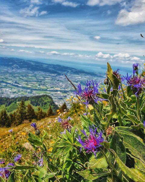 #9 - 300520 . . . . . . #hohekugel #withmyman #saturday #hiking ...
