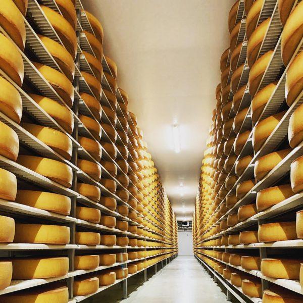 Es wird Herbst 🍂 ... Hochsaison im Käseverkauf. 🧀🛒🚛 Noch haben wir genügend Vorrat in unseren Käsekellern....