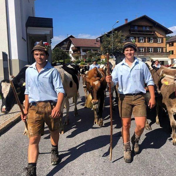 ➡️ Heimkommen. Am Samstag zogen unsere Heumilchlieferanten, die Fam. Feuerstein, mit ihren Tieren 🐄🐄🐐 von der Alpe...