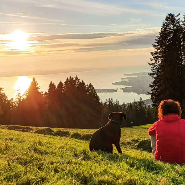#time and #silence are the most #luxurythings today (Tom Ford) #sundown #lastdaysofsummer #natur #vorarlberg #visitvorarlberg #bodenseeregion #pfänder...