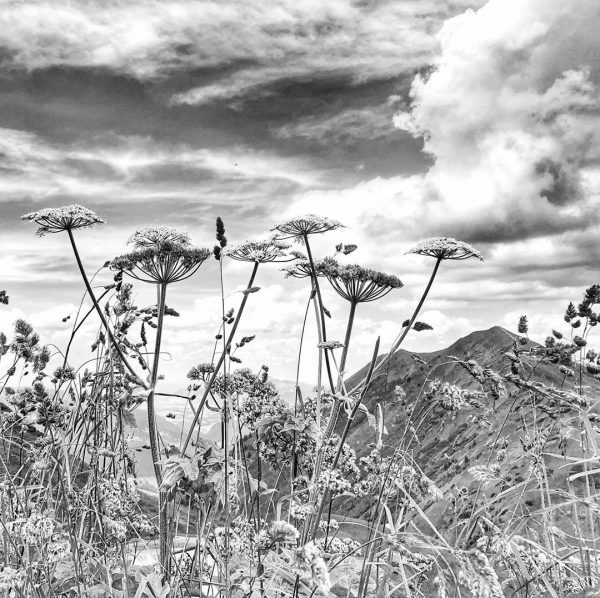 Kanzelwand. #kanzelwand #allgäu #allgäuliebe #allgäueralpen #kleinwalsertal #alpen #alps #nature #naturephotography #naturelovers #landscapephotography #landscape #landschaftsfotografie #landschaft #bnw #bnwphotography...