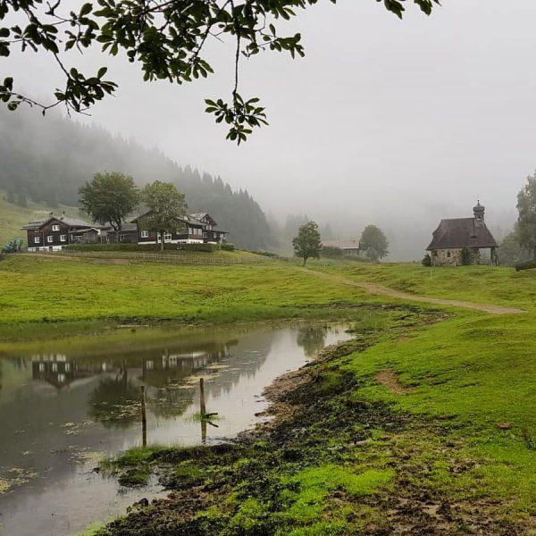 Auch bei Nebel schön – Wandern am Bödele, wie hier von Schwarzenberg über ...