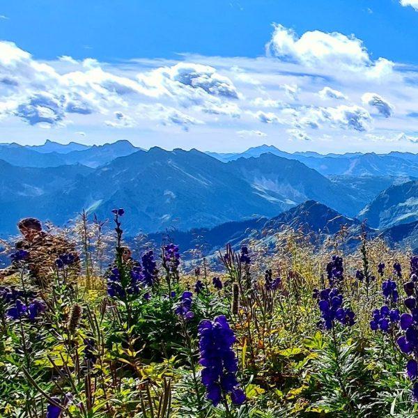 Still in love 🖤⛰ #bergln #mountains #austria #österreich #bergsteigen #hoherifen #kleinwalsertal #vorarlberg #gipfel ...