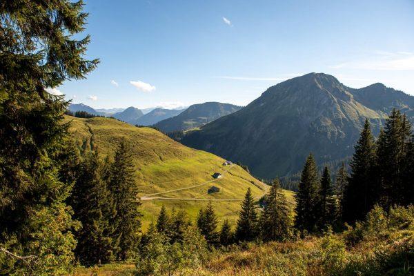 Herbstlicher Blick auf die Alpe Unterdamüls. Bei diesem Anblick bekommt man Lust dieses ...