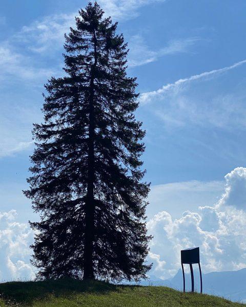 Windig? Kunst. #alpineartmuttersberg #feigerhochstand #hochstand #kunst #skulptur #marbodfritsch #muttersberg #bludenz #venividivorarlberg