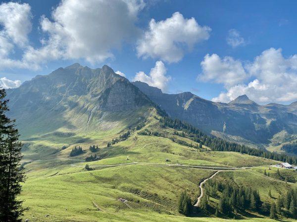 Bergsommer 2020 💚 #bergliebe #bergsommer #alpenliebe #mountainlove #bregenzerwald #austria #vorarlberg #au #kanisfluh #hoherstoss #wanderlust #visitaustria #visitvorarlberg Kanisfluh