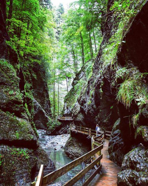 Never Stop Exploring ⛰ #austria #bregenz #holidays #hiking #canyon #river #mystic #nature #explore ...