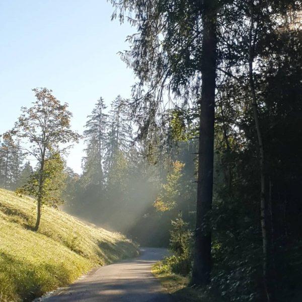 Heute waren wir kurz im Vorsäß Schönenbach 🥰 eine wundervolle Landschaft inmitten der ...
