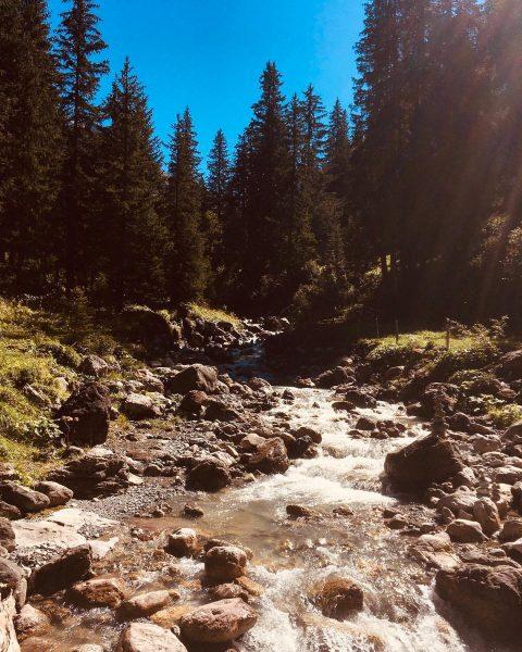 Das sicherste mittel gegen fast alles: Ein Tag in den Bergen mit einer ...