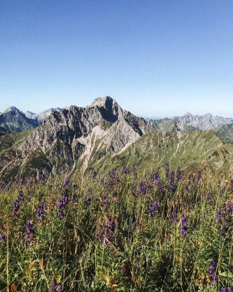 Herrliche Spätsommertage in den Mittelberger-Bergen ⛰ #kleinwalsertal #kleinwalsertaltravel #bergchaletbaad #berge #moutains #hiking #hikingadventures ...